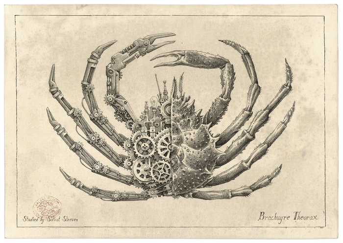 Intricate Biomechanical Drawings of Crustaceans by Steeven Salvat