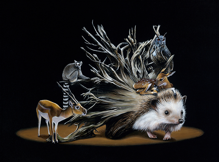 Gorgeous Surreal Paintings by Jacub Gagnon