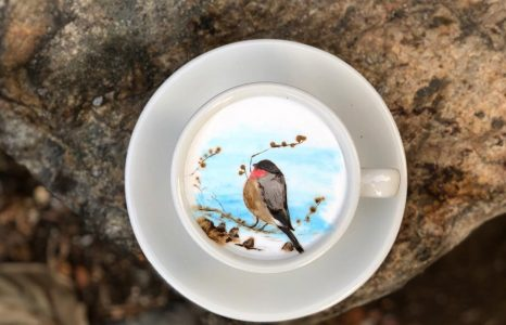 Impressive Coffee Art by Korean Barista Lee Kang Bin