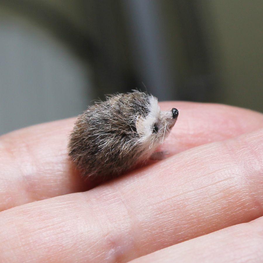 Tiny Realistic Animal Sculptures by Katie Doka