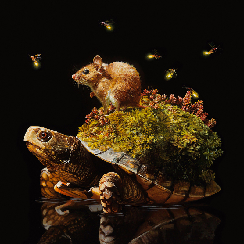 Stunning Hyperrealistic Animal Paintings by Lisa Ericson